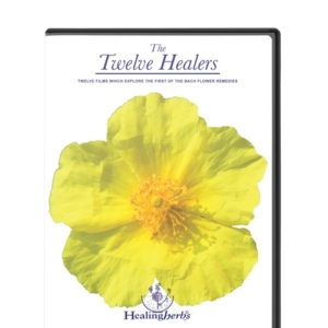 DVD 12 healers
