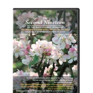DVD second 19