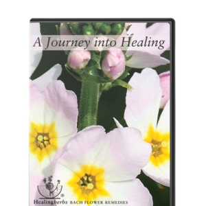 Dvd journey healing